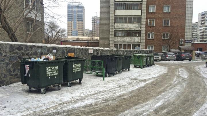 Новосибирская область стала лидером по росту тарифов на вывоз мусора — он выше среднего по стране в 10 раз