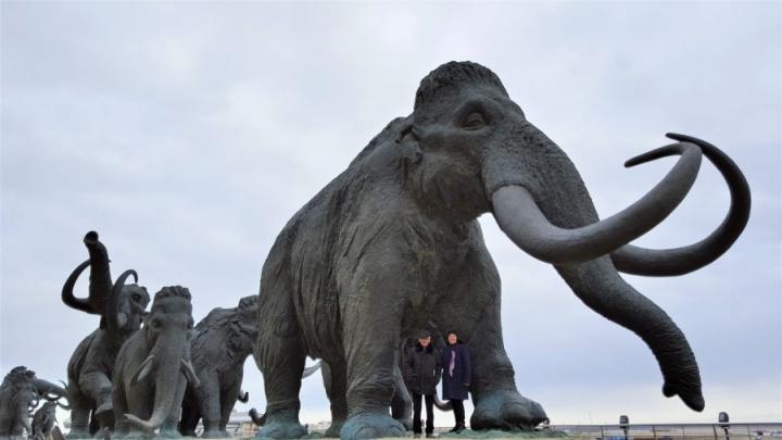 Красный Дракон, мамонты и «Яйцо Фаберже»: что посмотреть в Ханты-Мансийске за полдня