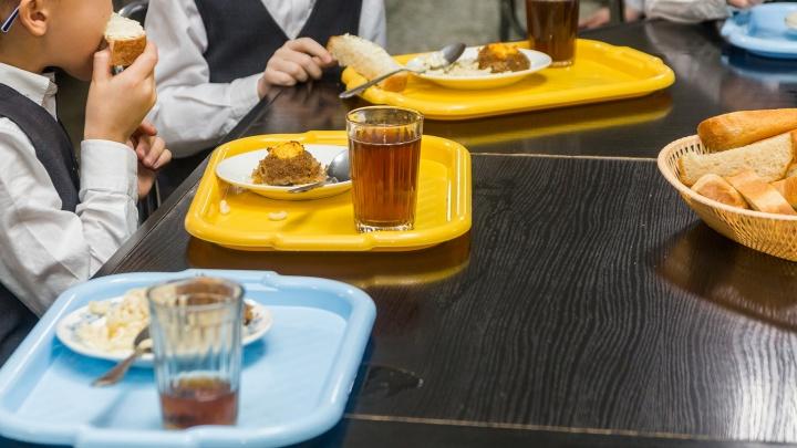 В Самарской области в этом году начнется масштабная модернизация школьных столовых