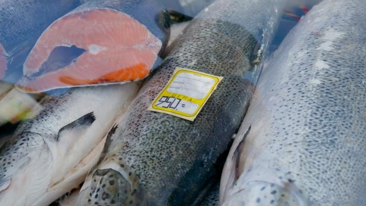 Пока своя дохнет: 90% горбуши на прилавках рыбных магазинов Поморья — завозные
