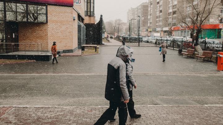Циклон принесет в Тюменскую область мокрый снег с дождем