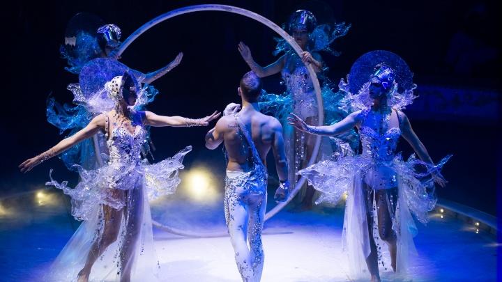 Такого Ярославль еще не видел: в выходные на арене цирка начнется легендарное шоу Гии Эрадзе «Бурлеск»