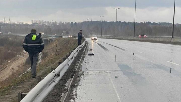 Полицейские задержали водителя, который сбил пешехода у Красавинского моста