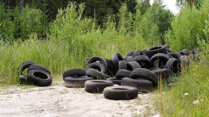 В Югре ликвидируют свалку из миллиона автомобильных покрышек. Чиновники привлекают нефтяников