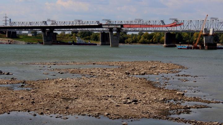 В Новосибирске резко обмелела Обь — посмотрите, как сейчас выглядит река