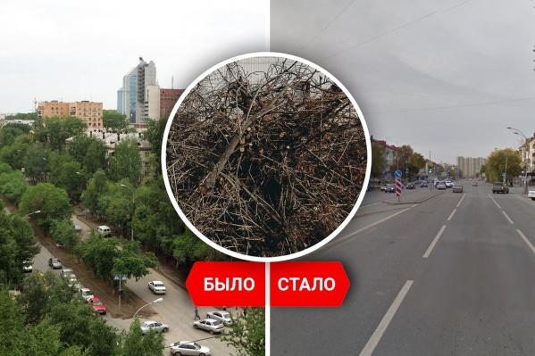 Сравним Тюмень на спутниковых снимках. Стала ли зеленее она