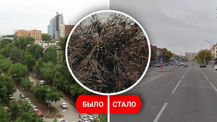 Позеленела ли Тюмень? Сравниваем город на спутниковых снимках 2007 и 2021 года