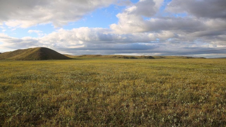 Археолог рассказал о загадочном поселении в устье Енисея: фото