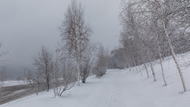 Весна точно заблудилась: Волгоградскую область завалило мартовским снегом