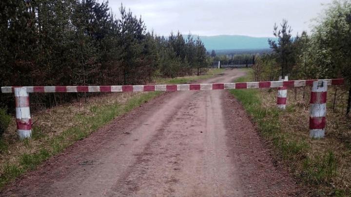 В девяти районах Башкирии запретят ходить в лес до конца июля