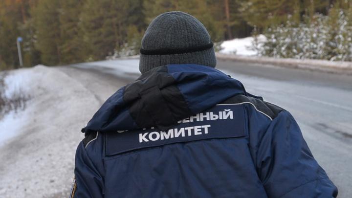 «Прилег посмотреть на самолеты и навсегда уснул»: возле аэропорта Кольцово нашли труп мужчины