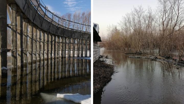 В Новосибирске повышается уровень воды в Туле. Будут ли эвакуировать местных жителей?