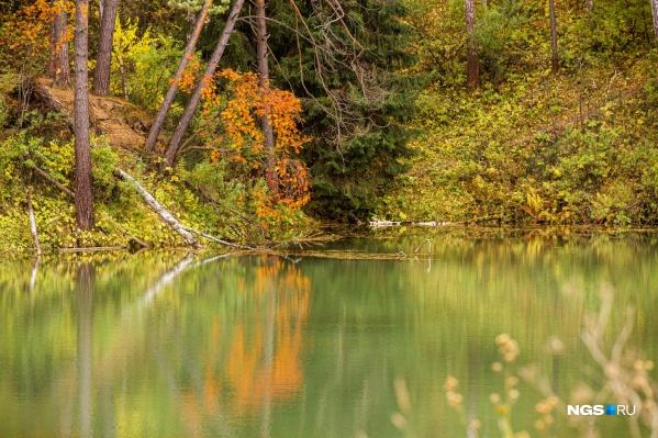 Осень в Ботаническом саде имеет множество оттенков: от зеленого до красного