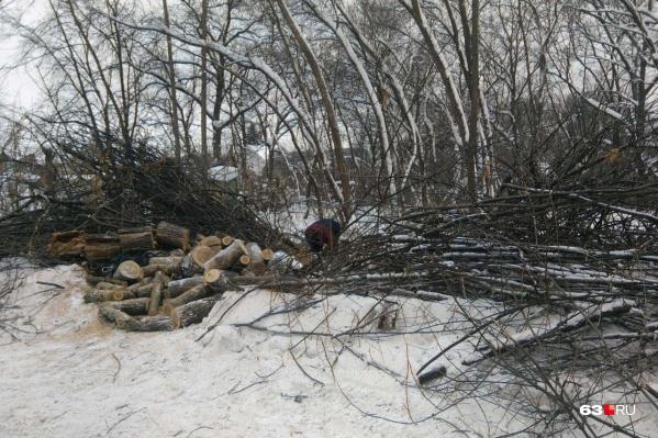 По словам местных жителей, вырубка участков началась 12 января
