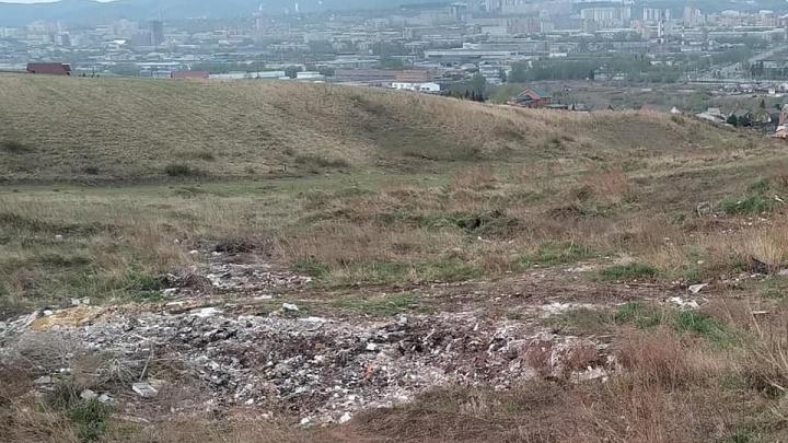 Многодетной семье в Красноярске предложили участок со свалкой