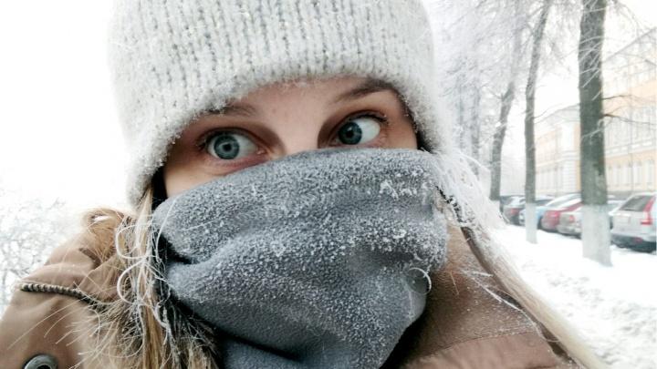 «Такой стужи не было три зимы»: на Ярославль идут трескучие морозы