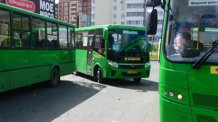 Мэрия Екатеринбурга ищет перевозчика, который будет обслуживать пять автобусных маршрутов
