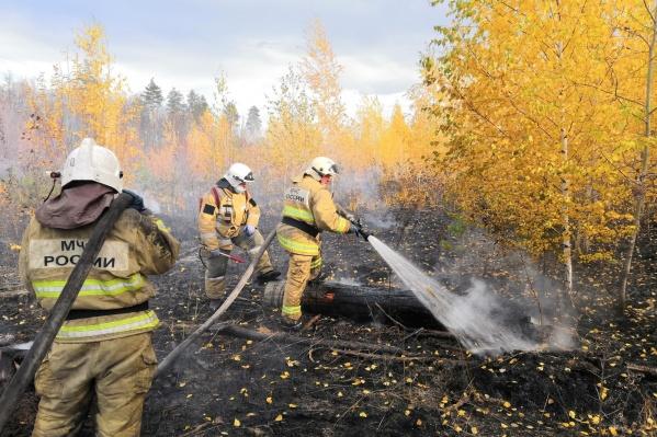 Огонь тушили более 40 человек