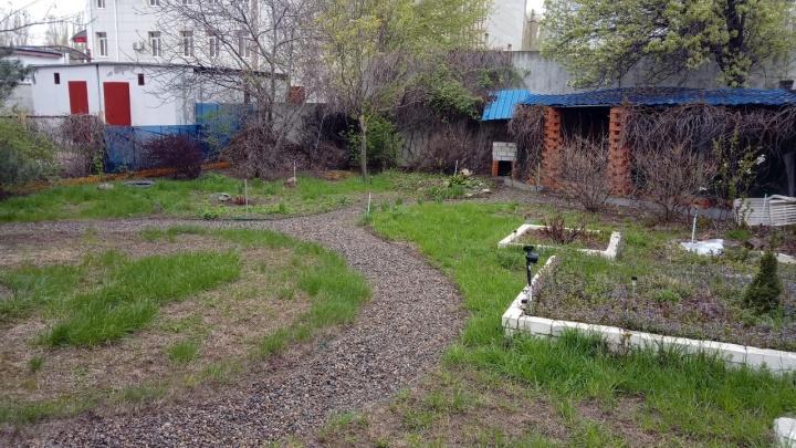 «Концессии» считают, что я вылил в огород 82 тонны?»: волгоградцев разоряет полив огородов по счетчику