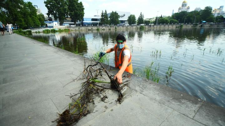 В Екатеринбурге планируют почистить акваторию Исети и три городских пруда