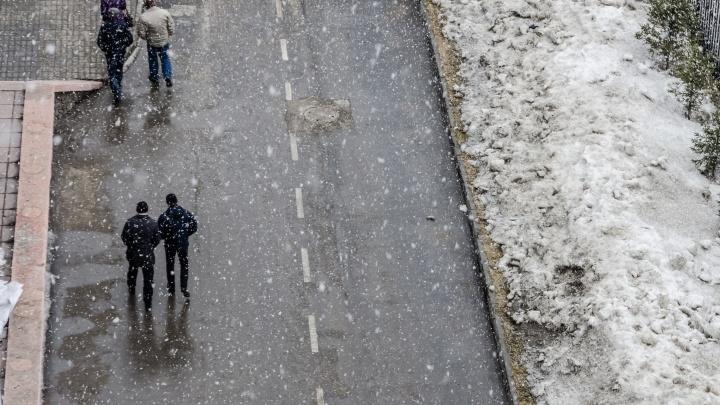 Новосибирцев ждет пасмурная погода с мокрым снегом и порывистым ветром