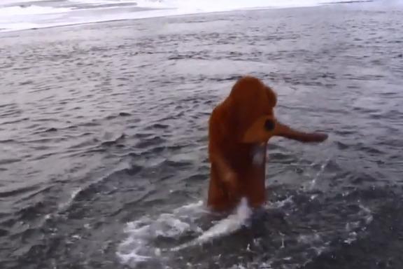 «Все вопросы к медведю»: красноярец в костюме окунулся в Енисей на Крещение, чтобы избежать штрафа