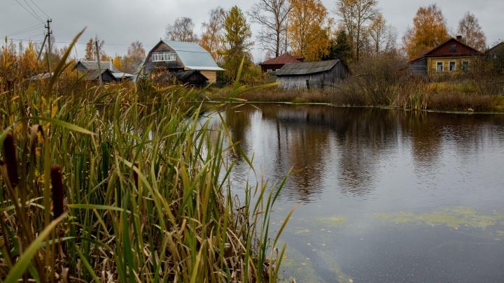Тело ищут водолазы: в Ярославской области в реке утонул ребенок