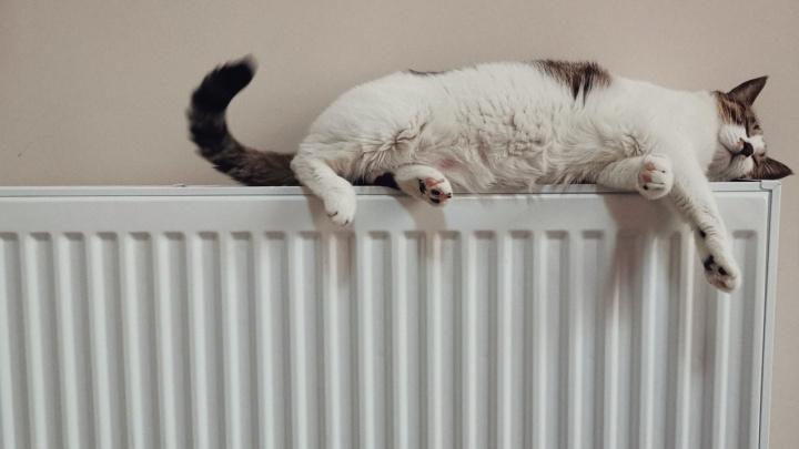 Холодно или жарко: жители Красноярска, Канска и Назарова могут поставить оценку теплоснабжению на карте