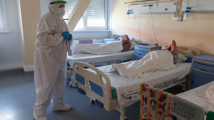 15 умерло, 346 заболело: распространение COVID-19 в Волгограде и области остановить не удается