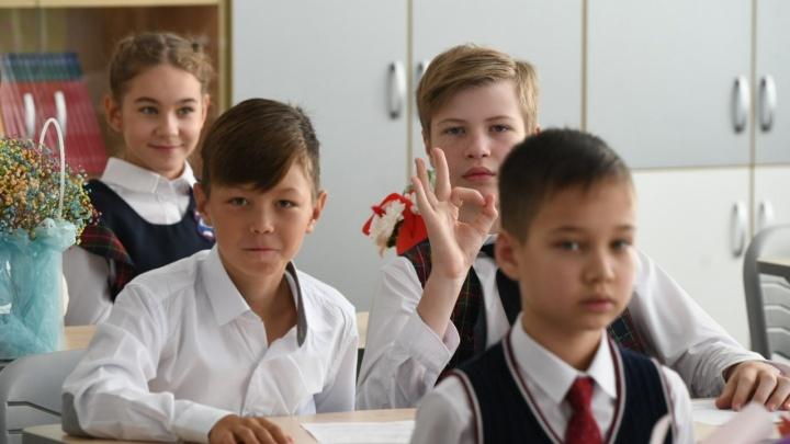 Проверяйте карточки: в России начались выплаты путинского пособия на школьников