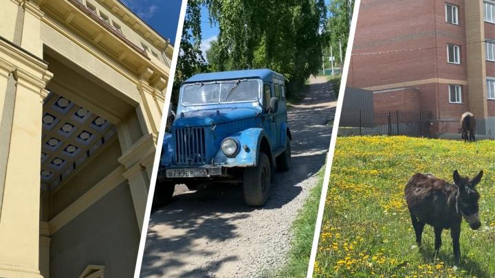 40 км по Новосибирску: идем по маршруту блогера из TikTok и смотрим на красоты города (фото + карта)