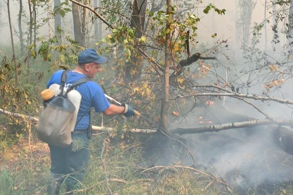 Пожары тушат сотрудники МЧС и Авиалесоохраны