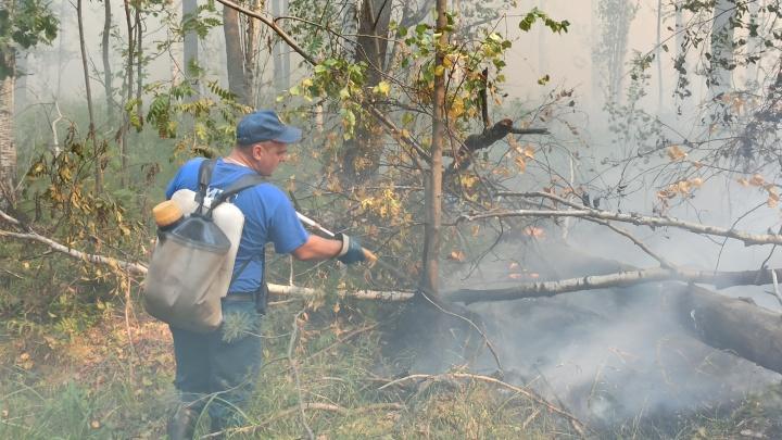 Лесные пожары на Урале тушат больше 100 человек, но огонь все равно распространяется