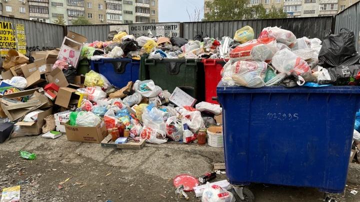«Уже бегают крысы»: челябинцы пожаловались на проблему с вывозом мусора на Северо-Западе