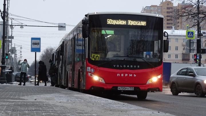 В Перми появилось 14 новых остановок общественного транспорта
