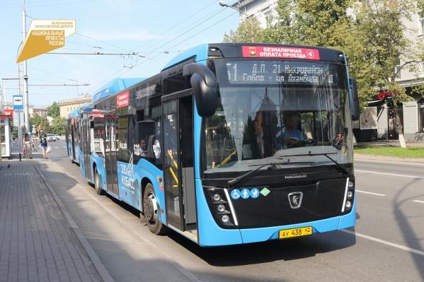 Всего в регион должно поступить 105 низкопольных автобусов с валидаторами