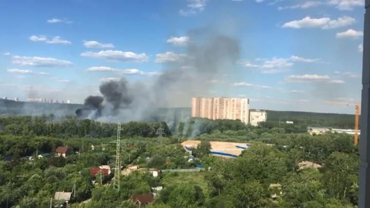 Прокуратура решила проверить сотрудников парка Маяковского после крупного пожара