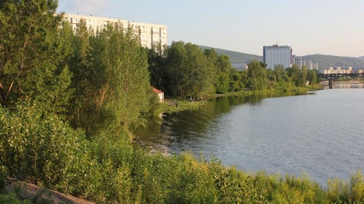 Красноярский Росприроднадзор обязали рассмотреть допустимость отсыпки Абаканской протоки под строительство