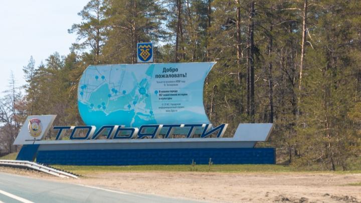 МЧС: пожар в городских лесах Тольятти ликвидировали