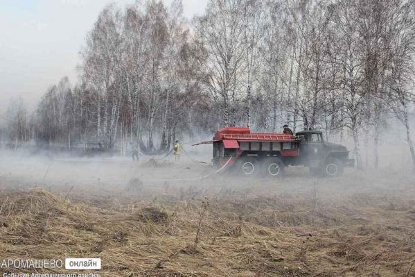 Из-за серьезных пожаров на юге Тюменской области объявили о чрезвычайной ситуации