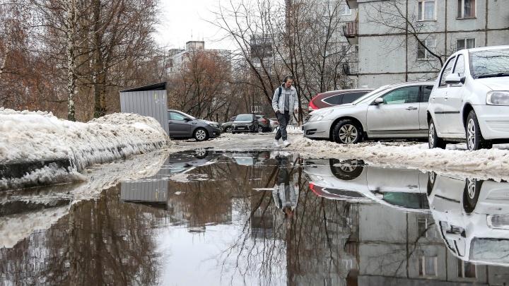 В Нижегородской области установлен январский температурный максимум за всю историю наблюдений