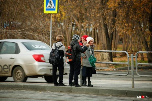Прокуратура обязала чиновников установить пешеходные переходы