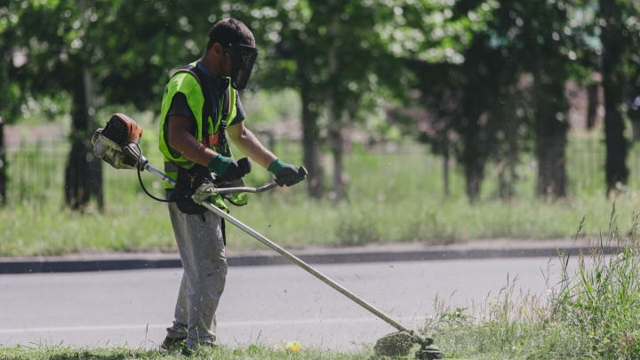 Как в Челябинске косят траву: подрядчик объяснил, зачем срезают разнотравье