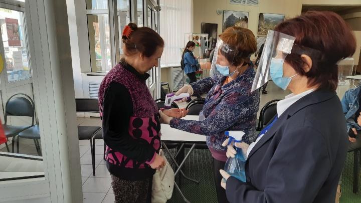 Безопаснее похода в магазин: как пройдут выборы депутатов Госдумы в Курганской области