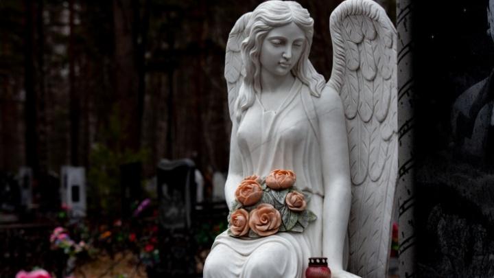«Это чистое предприятие». Колонка бывшего тюменца о том, почему городу нужен крематорий