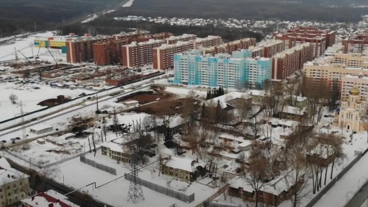 В Новой Самаре пообещали высадить деревья взамен срубленных