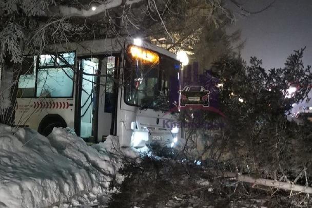 На Свободном автобус выехал на встречку и врезался в дерево