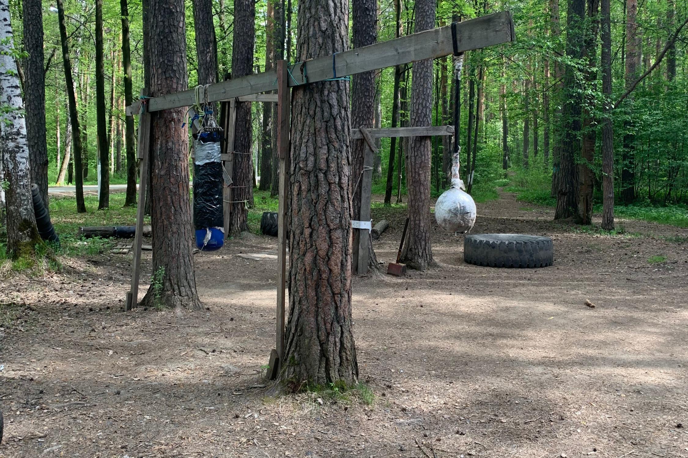 Роль тренажеров исполняют деревья