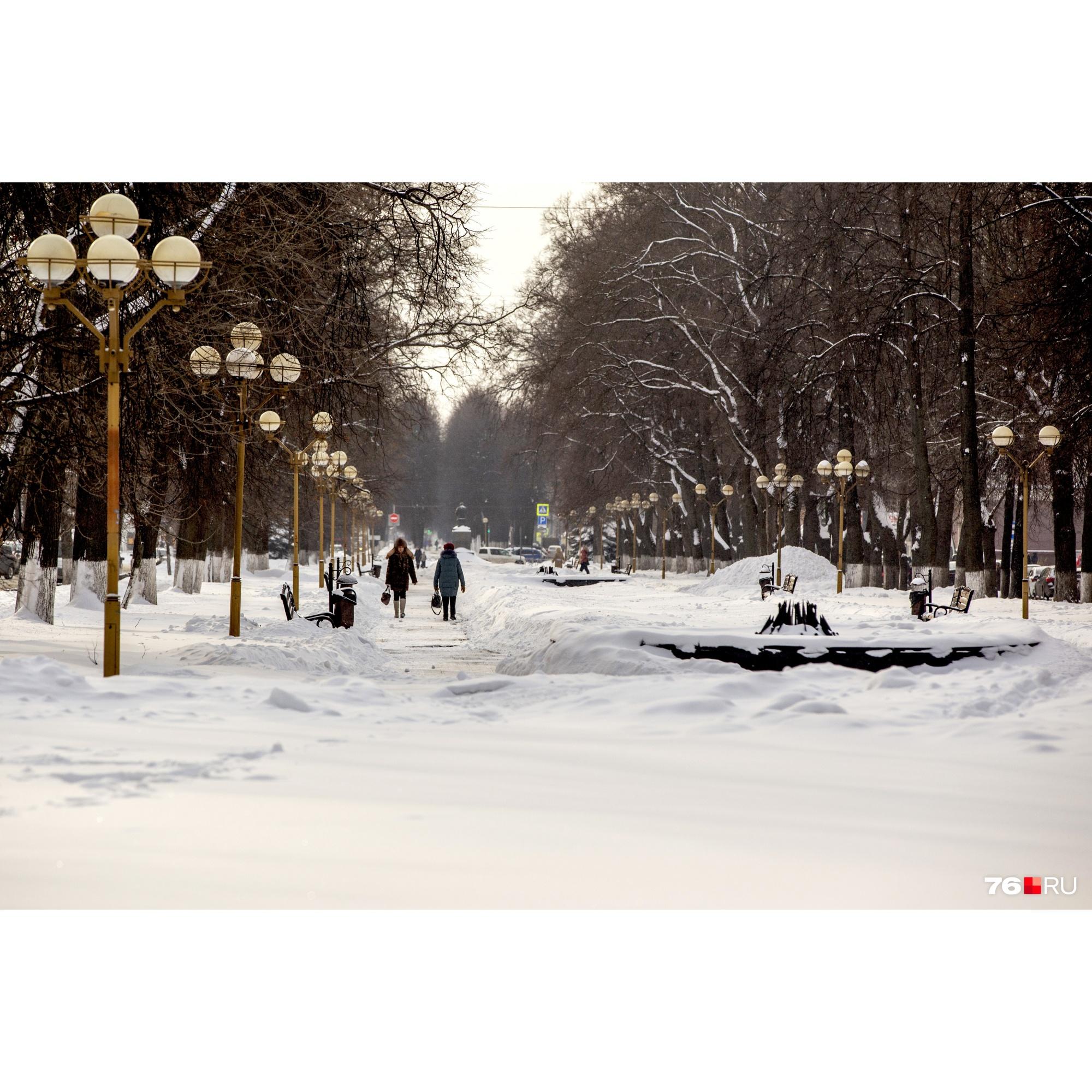 Бульвар на проспекте Ленина занесло снегом