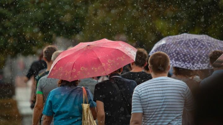 Дожди начнут лето в Ростове